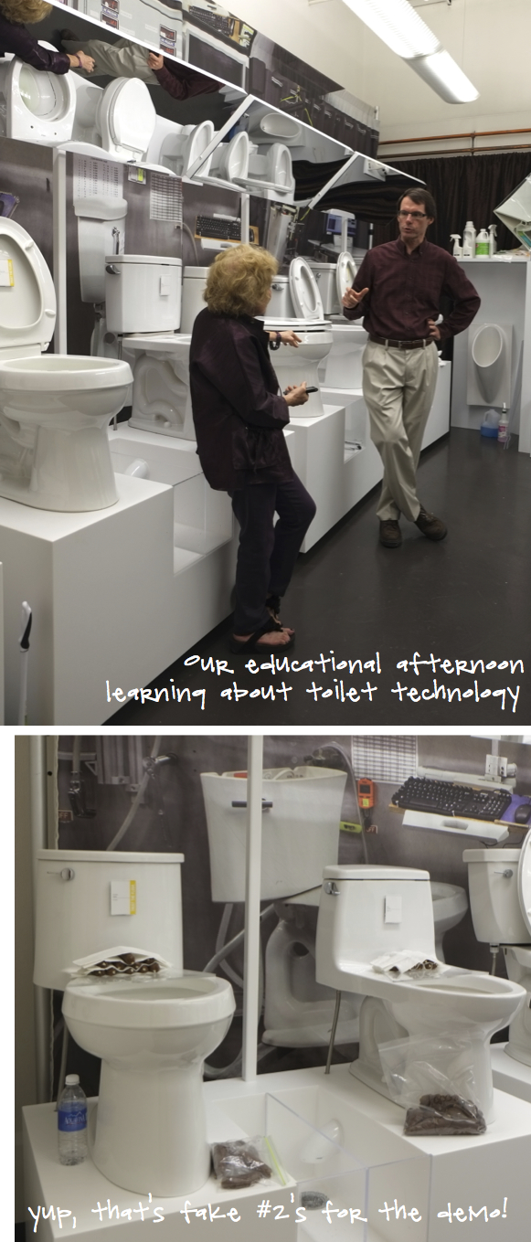 Kristina Crestin Design_Kohler toilet training