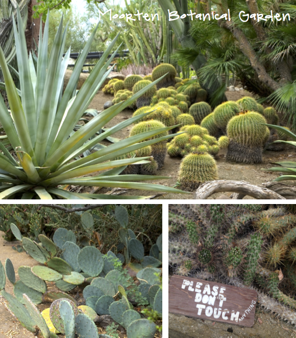Palm Springs Moorten Botanical Garden Eat Sleep Breathe Interior Design